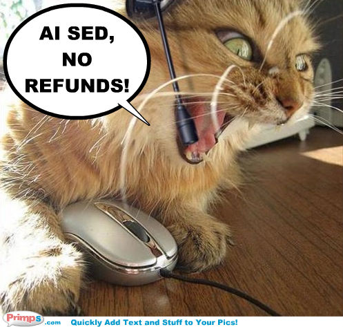 Cat says no refunds