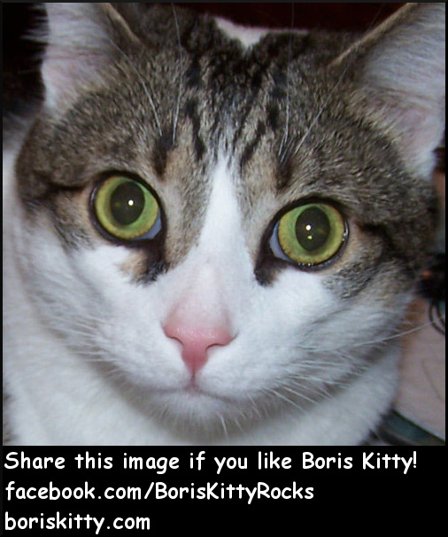 Boris Kitty