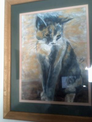 Fitz Kitty calico portrait for sale.