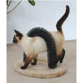 Feline Fantasy Brush self-grooming tool for cats