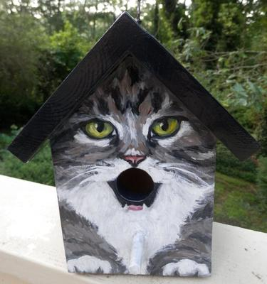 grey and white tabby bird house front