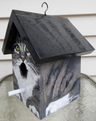 grey and white tabby bird house side