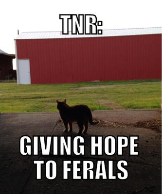This is the Hope For Ferals mascot