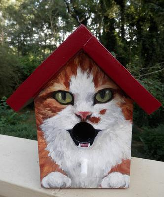 orange and white tabby bird house front