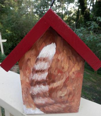 orange and white tabby bird house rear