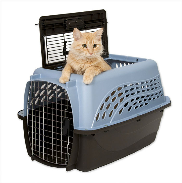 Petmate Top Loading Pet Carrier