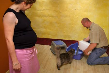 Pregnant woman avoiding litter box duty