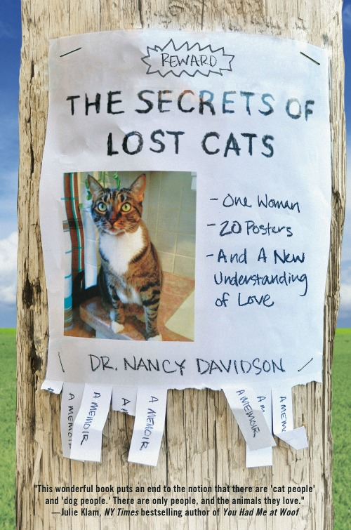 The Secrets of Lost Cats book cover