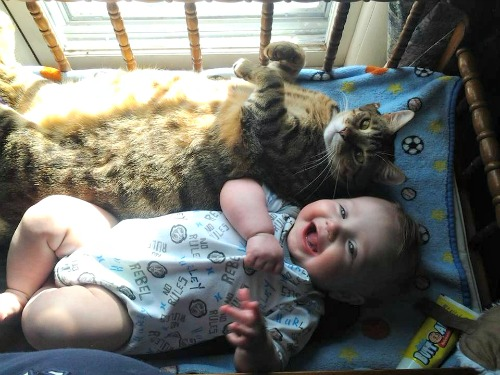 Sedona the tabby with baby Silas