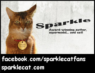 Sparkle the Designer Cat