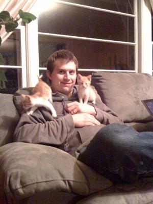 Tigger the Kitten2