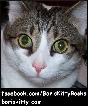 Boris Kitty