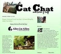 Cat Chat Blog screen shot