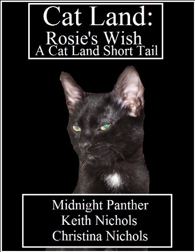 Cat Land: Rosie's Wish cover