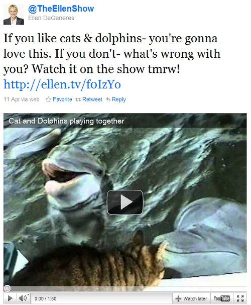 Ellen Show cat and dolphin video tweet