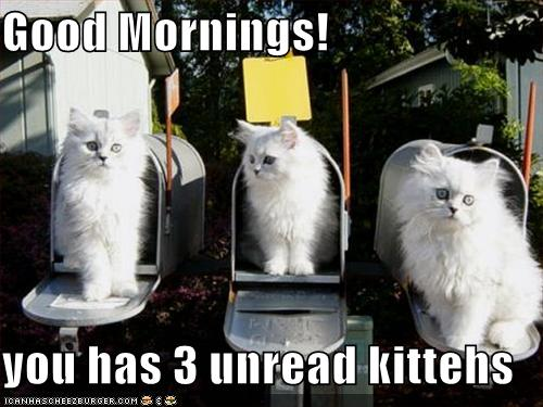 3 kittens in mailboxes