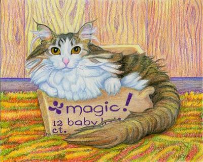 Sascha In The Magic Box