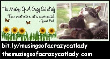 The Musings of a Crazy Cat Lady