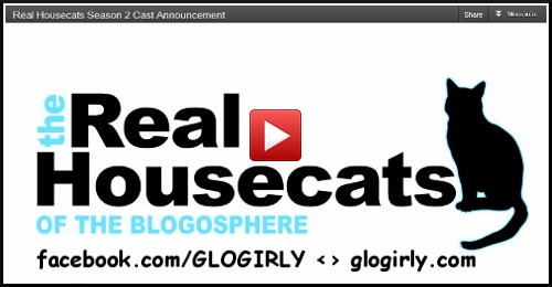 The Real Housecats of the Blogosphere video