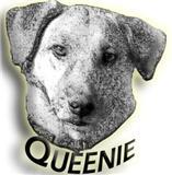 The Queenie Foundation Logo