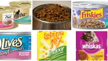 Which is the best low cost cat food